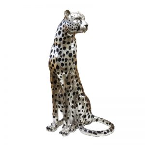 Silver Cheetah Sitting